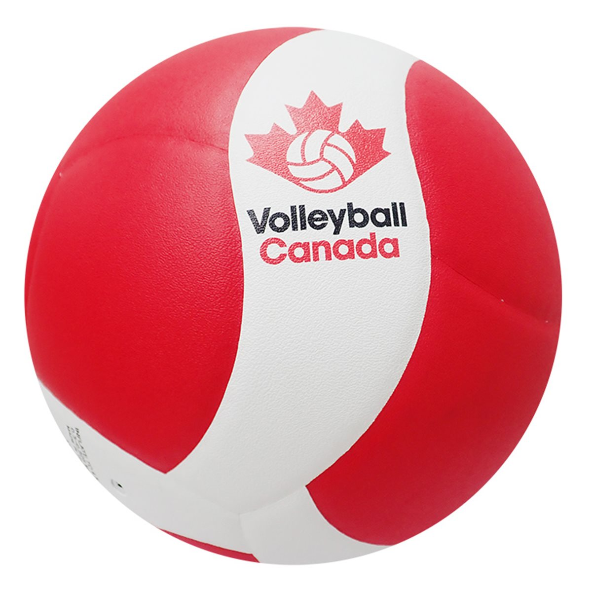 New Official Volleyball for MHSAA