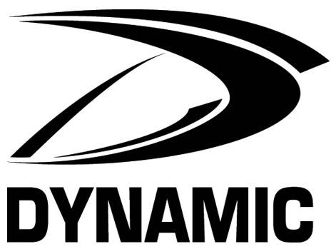 Dynamic Team Sports logo